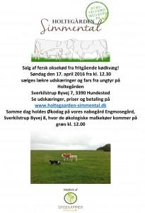 Salg af kød 17.04